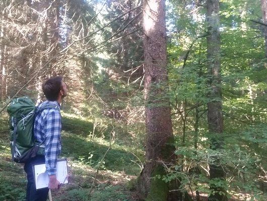 laboratorio eta piante guide altopiano w