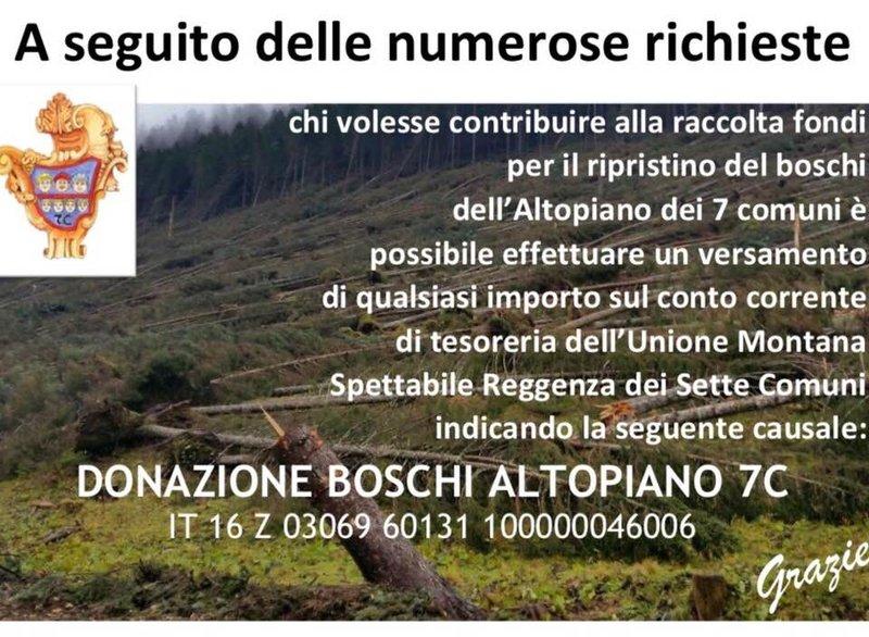 Donazione boschi Altopiano 7c